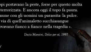 Maraini