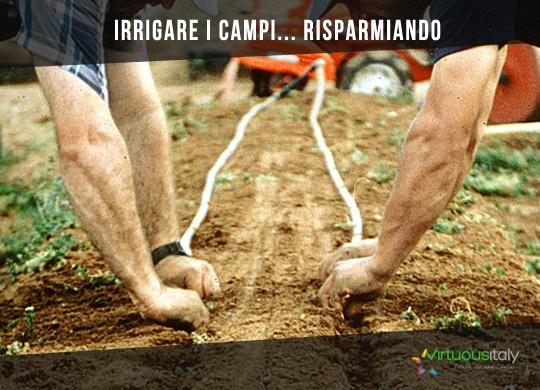 Approfondimenti_Irrigazione-a-goccia