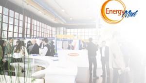 EnergyMed-2013